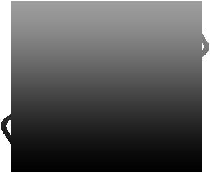 100-garantizado2